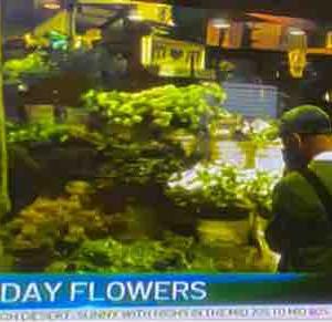 母の日 お花が足りなくなるかも…