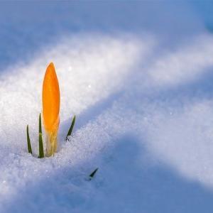 3月目前!冬の出口が見えてきたっ!
