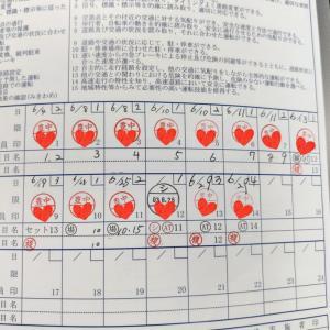 普通自動二輪持ちおっさんの普通自動車(MT)免許取得日記 〜2段階 技能教習13・14時限目~