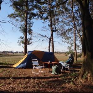 いつもの森で、まったりキャンプ  豊里ゆかりの森