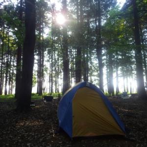いつもの森で、夫婦でまったりキャンプ