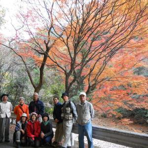 晩秋の日之影町 1泊2日体験ツアーをプロデュース!