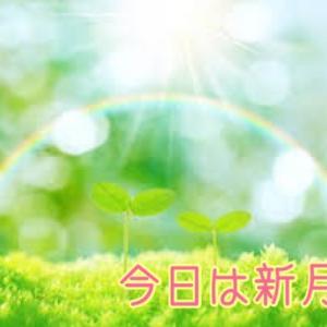 【幸せな奇跡は自分でふくらませていく!!】 と本当に幸せな奇跡が寄ってくるという実話