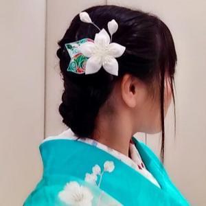 琴DUO〜葉小さめの桃幻花
