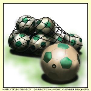 湘南ベルマーレサッカースクールのオンラインスクールを受講させてみた
