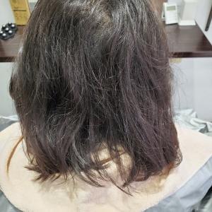 Mちゃん×縮毛矯正(難易度高め)