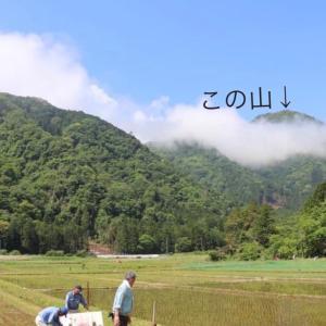 登山『矢筈山』