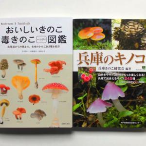 とうとうキノコの本を買ってしまう。アミタケはどこへ……