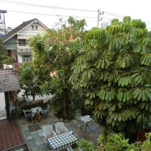 気ままに北タイ旅行記*8 チェンカム経由観光①