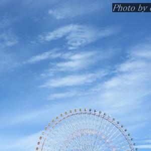 散歩写真(4月28日_MINATO)