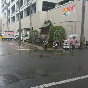本格的な梅雨入りだ。