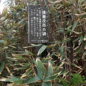 「横瀬夜雨の詩碑」---筑波山