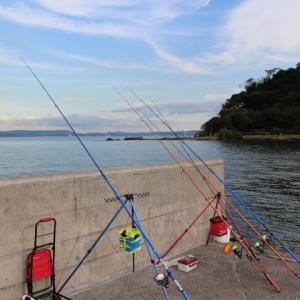 東京湾岸各地で台風被害も、カレイが釣れ始めました