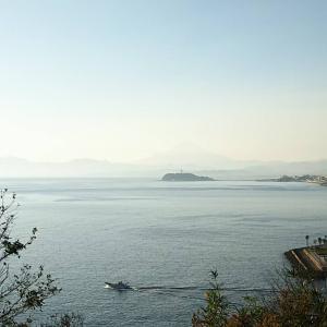 穏やかな湘南の海