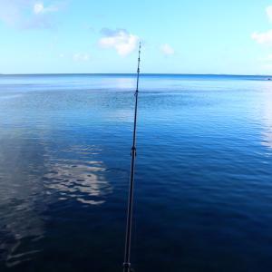 海が凪で景色がきれいでも、釣れない