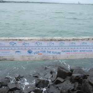 どの釣り場にも、資源保護の注意書き