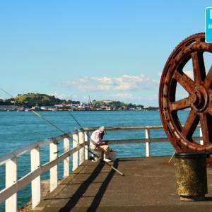 大きな歯車の釣り場と、大型船の絶景