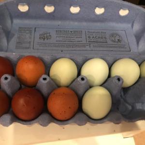アメリカで卵かけご飯♪
