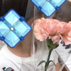 「噂の東京マガジン」とピンクのカーネーション