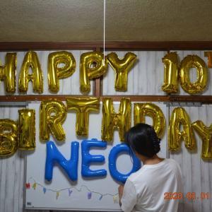 Happy birthday NEO @10th