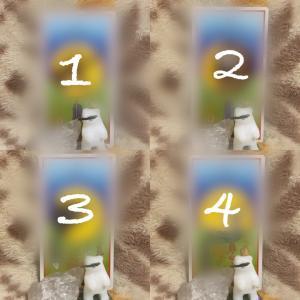 今週のメディスンアニマル(6/1)