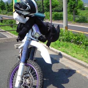 2015年9月14日のTT250R ~道の駅ツーリング・京都編~