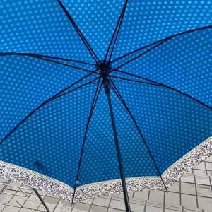 一日雨でした