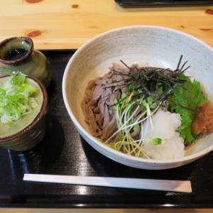 札幌でランチ(73)「手打ちそば さくらの定食屋」で極太ちぢれ蕎麦をいただく
