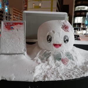 札幌・街の一コマ : しろっぴー