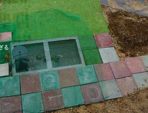 念願の池作り