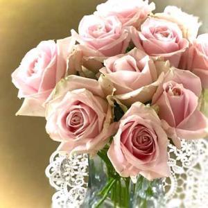 ピンクの香りバラを頂きました。