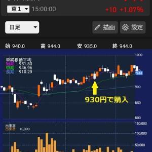 購入個別株紹介(10)安田倉庫…割安倉庫株