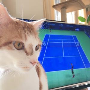 楽天オープンテニス生観戦と、来年の自分への備忘録