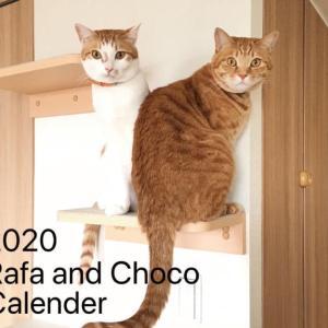 2020年『Rafa&Choco』カレンダー(ねこ募金)