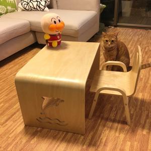 トー君のお気に入り家具