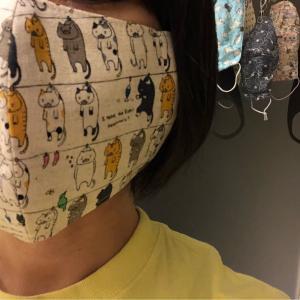 布マスク収集が趣味みたいになってきた