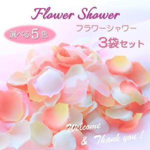 隠れた売れ筋商品 手作りオガンジーの花びらが輝く 「オリジナルブレンドのフラワーシャワー」ペタル