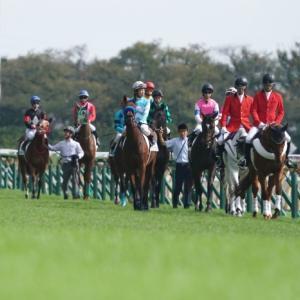 東京競馬メイクデビュー、たった3頭の産駒から新馬戦勝ち馬誕生、トウケイタンホイザ。