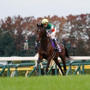 第39回ジャパンカップ(外国馬の出走はなくても、外国人騎手は多いなあ。)-返し馬