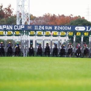 第39回ジャパンカップⅡ(外国馬の出走はなくても、外国人騎手は多いなあ。)-レース