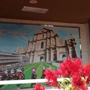 香港競馬リポート(2)タイパ競馬場(マカオ)