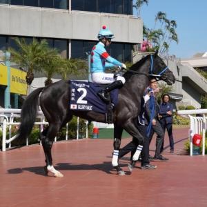 香港競馬リポート(3)香港国際競走 第4レース 香港ヴァース