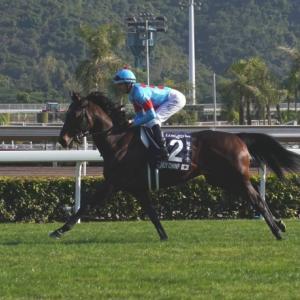 香港競馬リポート(5)香港国際競走 第7レース 香港マイル(GⅠ)