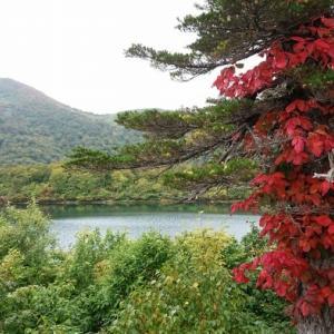 「殿、利息でござる!」吉岡宿、日本三大名瀑・秋保(あきう)大滝、白石城をめぐる旅。