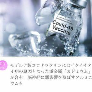 モデ○ナにはイタイイタイ病の原因だったカドミウムも含有⁉️
