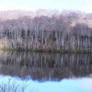 11月24日の深坂峠と野々海