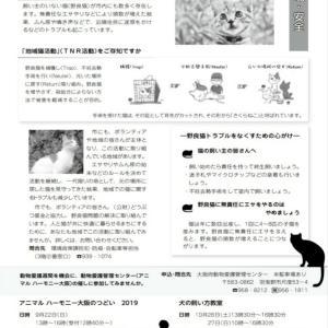 広報9月号と絵本『お母さんのらねこのおはなし』の寄贈のご報告(途中報告)