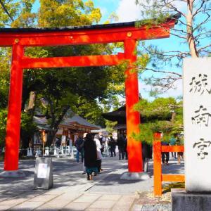 京都 城南宮 枝垂れ梅と椿