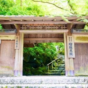 京都瑠璃光院、八起庵本店