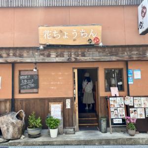 滋賀 琵琶鱒丼 花ちょうちん